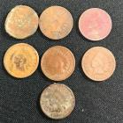7 Indian Head Pennies